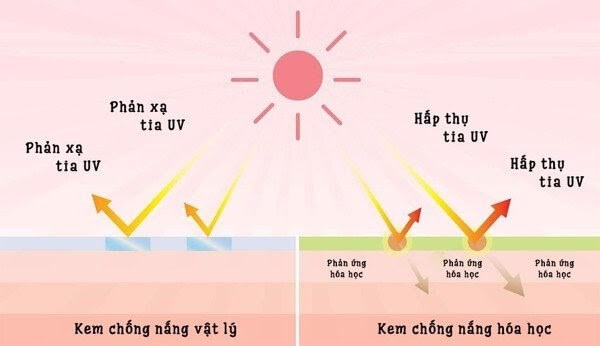 Sự khác nhau giữa các loại kem chống nắng