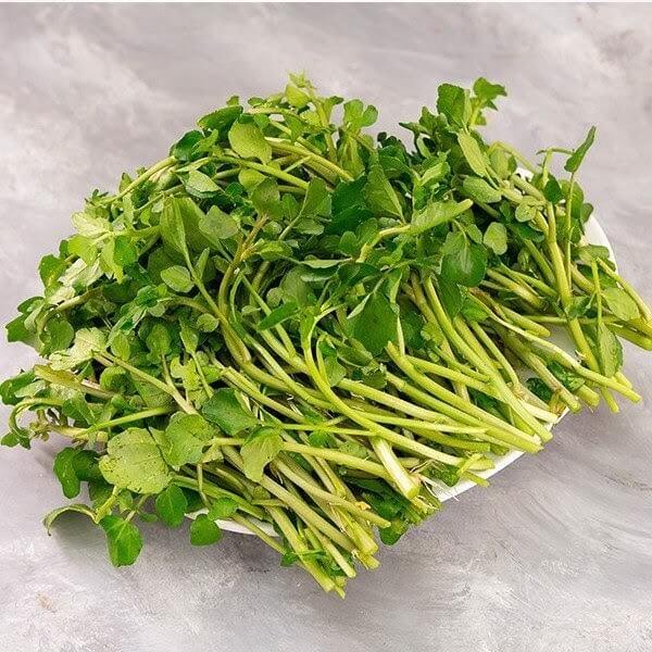 Rau cải xoong rất tốt cho sức khỏe