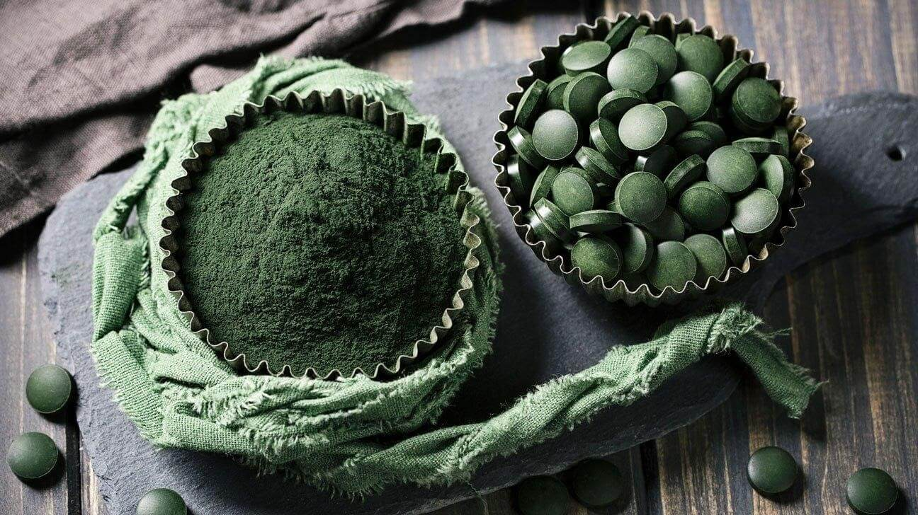 Tảo spirulina chứa cực nhiều chất dinh dưỡng